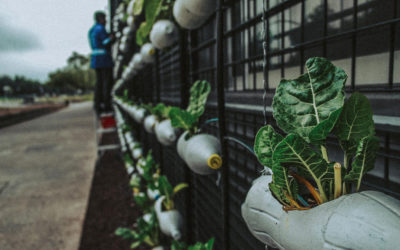 How AgTech in Smart cities are supporting the UN's sustainable development goals